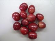 coffee beans at nihombashi