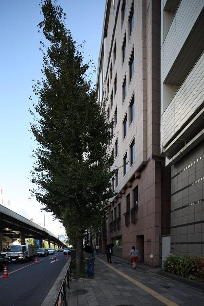 サウスヒル永田町